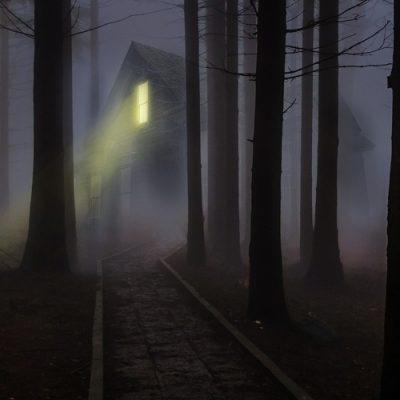 foggy-545838_1920b